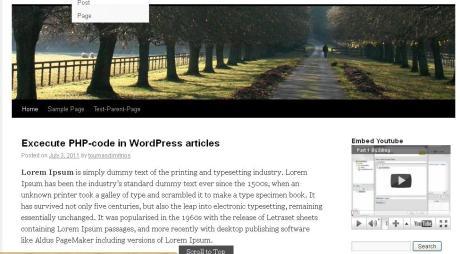 Embeding YouTube video in Sidebar on WordPress
